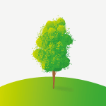 Icono sostenibilidad Quakki